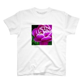 芍薬(1) T-shirts