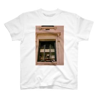 写真シリーズ① T-shirts