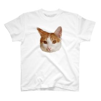 ほたて T-shirts
