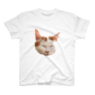 シラス T-shirts
