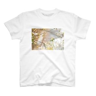 l'été de la Saint Martin(小春日和) T-shirts