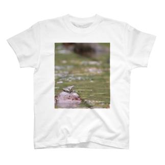 カジカガエル T-shirts