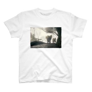 霧に包まれた秘境 T-shirts