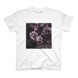 さくら Cherry Blossoms T-shirts