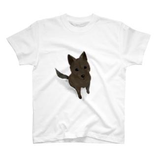 見上げる甲斐犬 T-shirts
