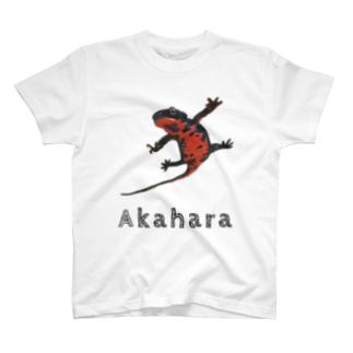 クリエイターふくろうのアカハライモリ ほほえみフレンズ T-shirts