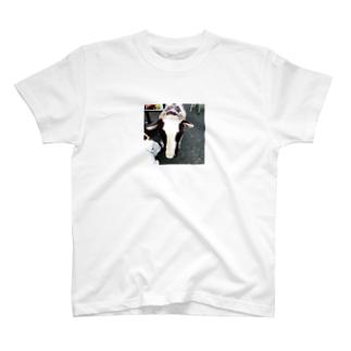 草食動物 T-shirts