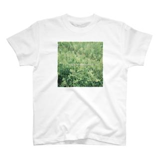 ぺんぺん草を愛する人へ T-shirts