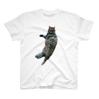 ぐうたらお猫様 T-shirts