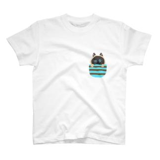 シャム猫シャムシャム ミントボーダー T-Shirt