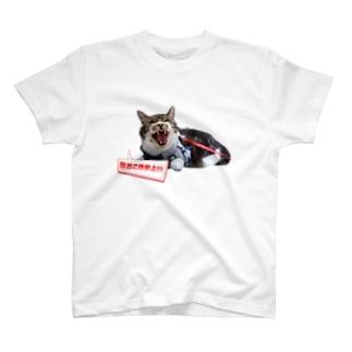 真・激おこ侍シリーズ T-shirts