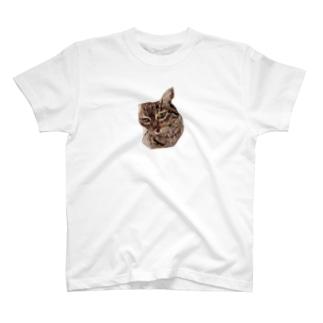羊毛フェルトのふわふわ貫禄ねこ T-shirts