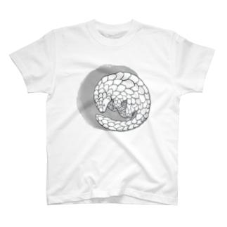 センザンコウ。 T-shirts