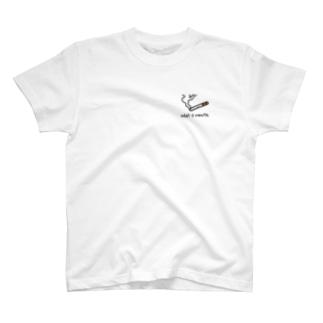 Wait a minute. T-shirts