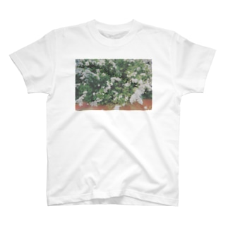 雪柳(ユキヤナギ) T-shirts