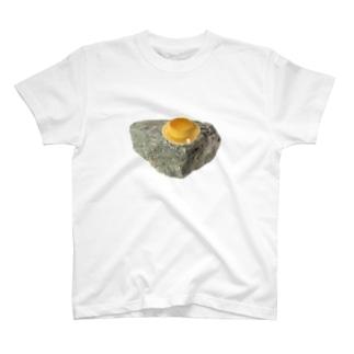 無機物と有機物 T-shirts