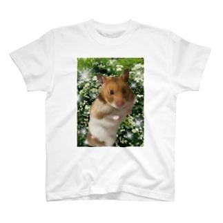 ハムスターの麦 T-shirts