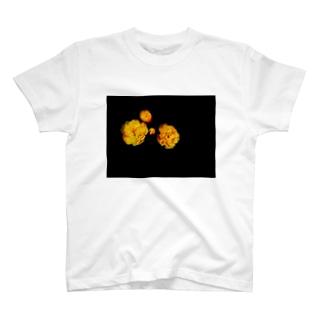 hana2 T-shirts