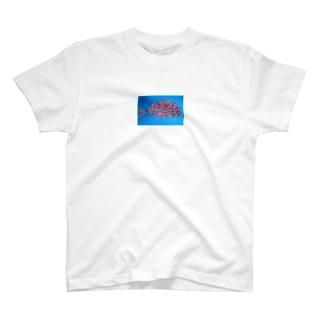 カラフル鯛 T-shirts