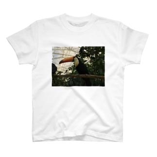 トロピカルバード T-shirts