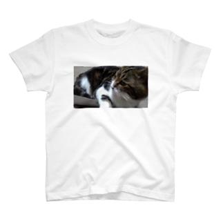 なつぴ T-shirts
