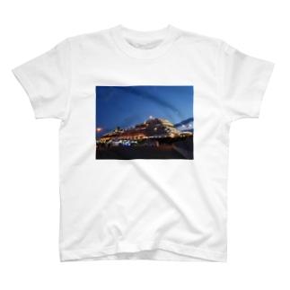 Gorgeous Ship T-shirts