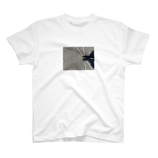 テスト T-shirts