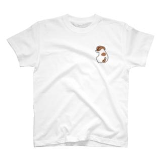 ジャックラッセルテリア こいぬ T-shirts