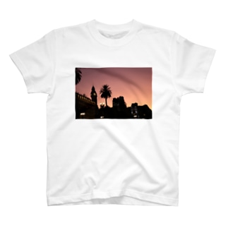 Una plaza en Buenos Aires T-shirts
