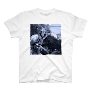 サーバルとウツボ。 T-shirts