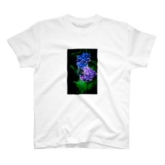 紫陽花とクロアゲハ T-shirts