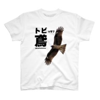鳶(トビ)っきりokaphotonowグッズ T-shirts