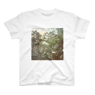 rose garden T-shirts
