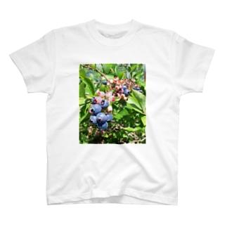 ブルーベリー① T-shirts