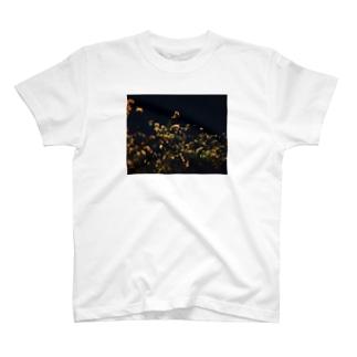 手ブレがひどいTシャツ T-shirts