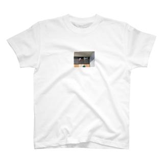 溝ネコ 一 T-shirts