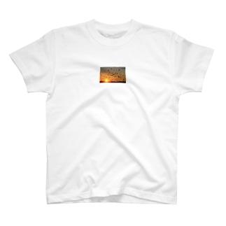 カラス撃退 T-shirts