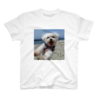 あとむ T-shirts