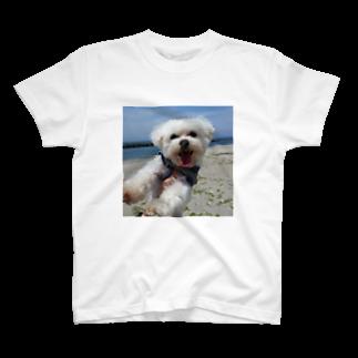 まゅまゅのあとむ T-shirts