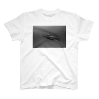 japan's sea n39 父島 クジラ親子モノクロ T-shirts