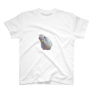 おしゃれこはちゃん T-shirts