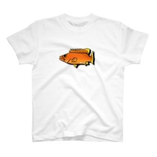 キジハタ(アコウ) T-shirts
