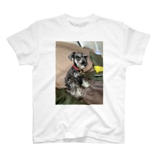 らんまる T-shirts