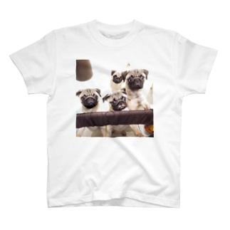 PUG FAMILY T-shirts