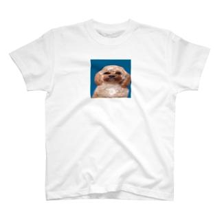名前はもうついておる T-shirts