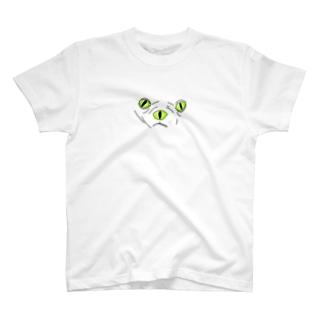 TWW T-shirts