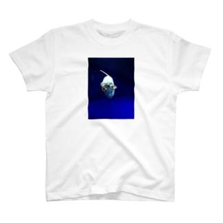 マンボウさん T-shirts