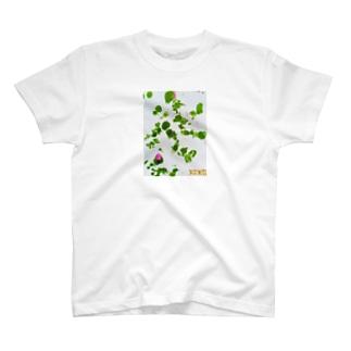 xo💚 T-shirts
