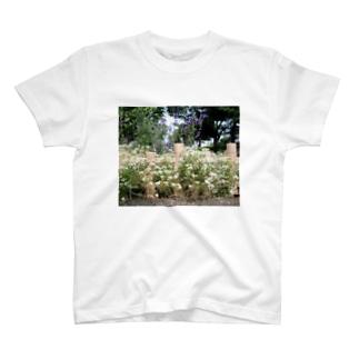 咲いています T-shirts