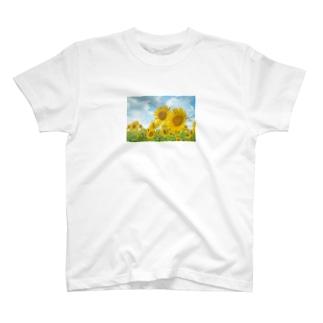 ひまわり畑の恋 T-shirts